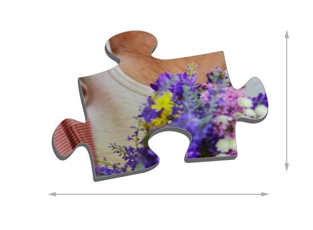 Dimensions des pièces du puzzle - Puzzle photo 500 pièces
